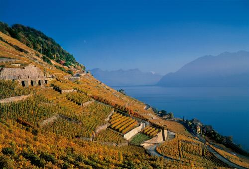 Lausanne – kaupungin matkailupalvelut AppStoressa