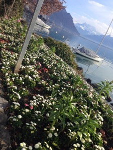 Montreux. Kuva: Mia Lanz